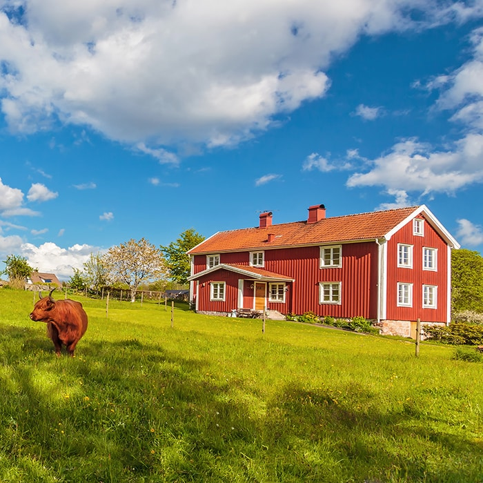 Träfönster Kronfönster Made by Småland